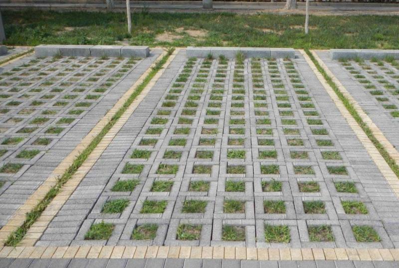 植草砖里种什么草比较好-路沿石